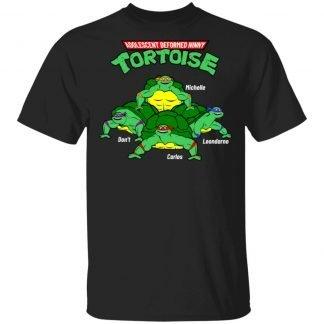 Adolescent Deformed Ninny Tortoise - Closeup